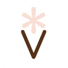 Veganista Ice Cream